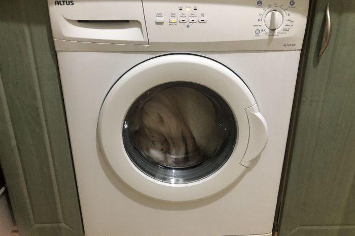 6 kilo 800 devir altus çamaşır makinesi